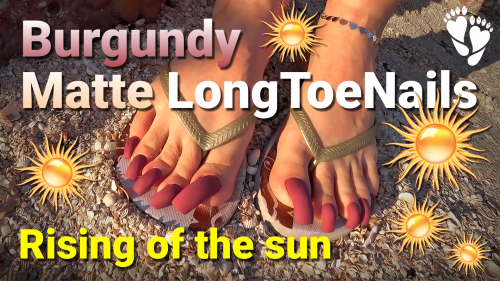 Sunrise ☀️ Burgundy Matte 🦶 LONG TOENAILS